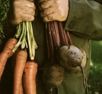 Garden Fresh vegetables What's in Season and How To Get the Best Out of Them - EAT LOVE SAVOR International luxury lifestyle magazine and bookazines