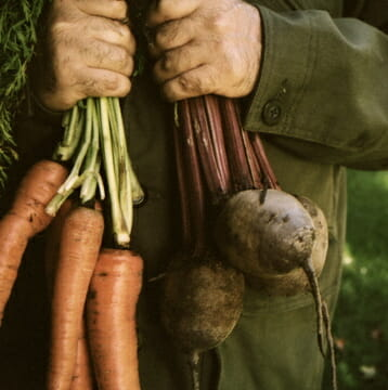 Garden Fresh vegetables What's in Season and How To Get the Best Out of Them - EAT LOVE SAVOR International Luxury Lifestyle Magazine