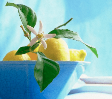 bowl of lemons green and flowers Food On Display: Decor and Presentation - EAT LOVE SAVOR International luxury lifestyle magazine and bookazines