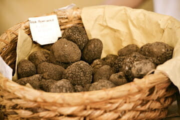 SantAgata Feltria Truffles Discover Luxury Food: Truffles - EAT LOVE SAVOR International luxury lifestyle magazine, bookazines & luxury community