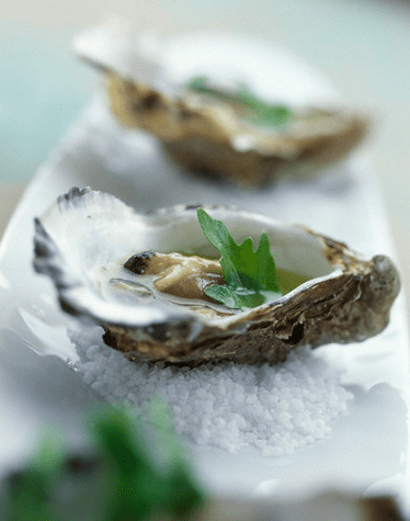 oysters in the half shell1 All About Oysters: A True Delicacy - EAT LOVE SAVOR International luxury lifestyle magazine, bookazines & luxury community