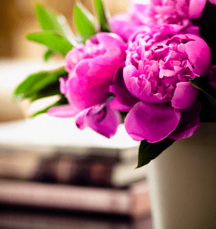 Vase of Flowers on Table Add Freshness to Your Spaces With Luxurious Flowers! - EAT LOVE SAVOR International luxury lifestyle magazine and bookazines
