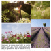 reconnect with nature summertime tranquility Reconnect With Nature: The Tranquility of Summertime - EAT LOVE SAVOR International Luxury Lifestyle Magazine