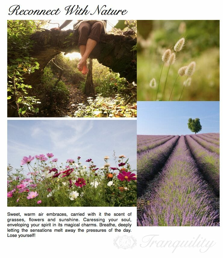 reconnect with nature summertime tranquility Reconnect With Nature: The Tranquility of Summertime - EAT LOVE SAVOR International luxury lifestyle magazine and bookazines