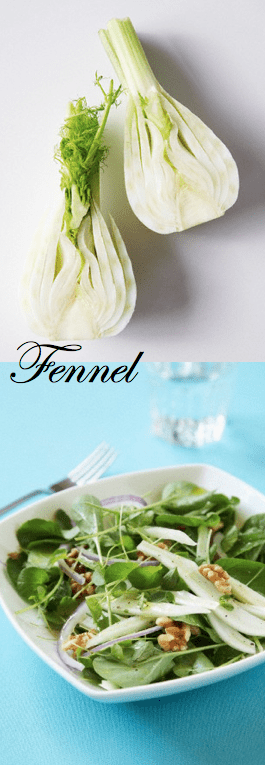 about the vegetable Fennel Discover: Fennel, a Fabulous, Age Old Vegetable - EAT LOVE SAVOR International luxury lifestyle magazine and bookazines