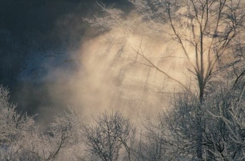 reconnect with winter Reconnect with Nature: Winter's Beauty - EAT LOVE SAVOR International Luxury Lifestyle Magazine
