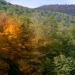 nature transforms Reconnect with Nature: The Beauty of the Seasons: Fall - EAT LOVE SAVOR International Luxury Lifestyle Magazine