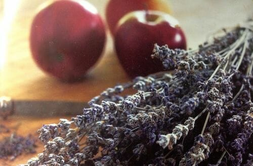 apples and lavender 2 RECIPE: Baked Apples with Vanilla and Lavender, Fragrant Fruit + Flowers. - EAT LOVE SAVOR International luxury lifestyle magazine and bookazines