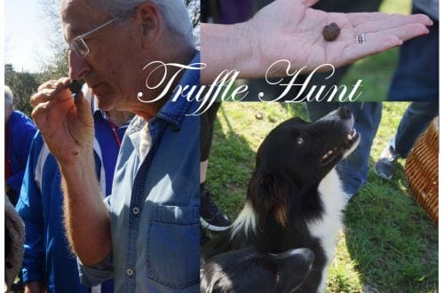 truffle hunt kime Truffle Hunting On The Périgord: The Quest For The Black Diamonds Of Cuisine - EAT LOVE SAVOR International luxury lifestyle magazine and bookazines
