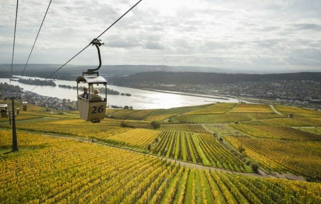 AmaWaterways Rudesheim GondolaRide MG 1632 kt Distilling the Essence: The AmaWaterways Wine-Themed Cruise - EAT LOVE SAVOR International luxury lifestyle magazine, bookazines & luxury community